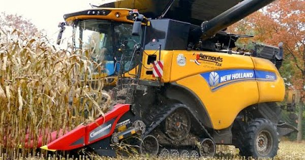 New Holland CR 10.90 on tracks | Corn and Corn Cob Harvest