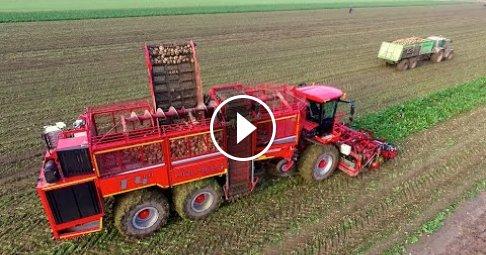 Holmer Terra Dos T4-40 & Fendt tractors | Sugarbeet lifting